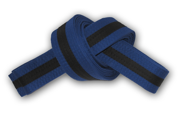 karatebelt 008 2