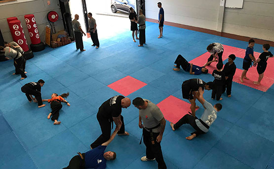 Family Martialarts Defence