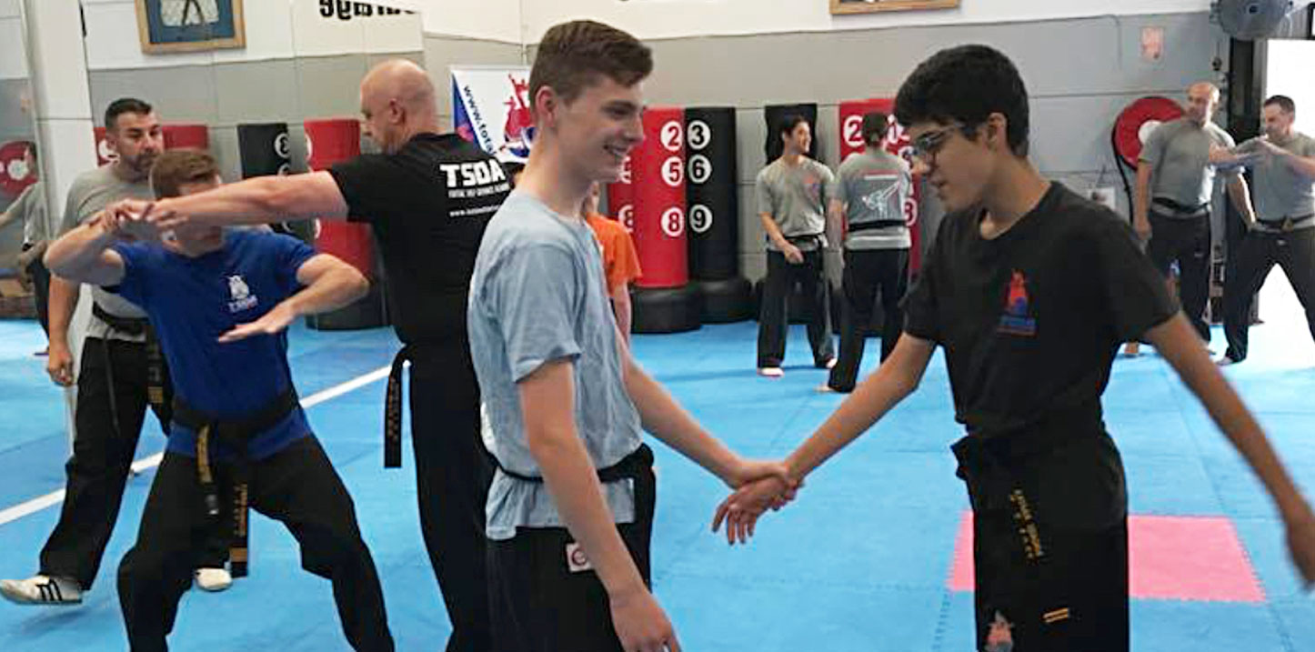 Total Self Defence Academy - Kids and Adults Hapkido